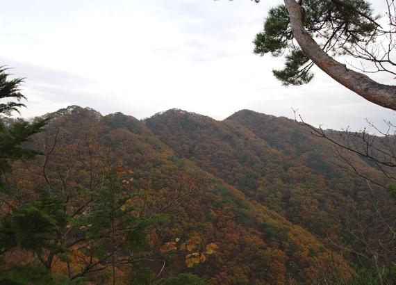 121124荒倉山