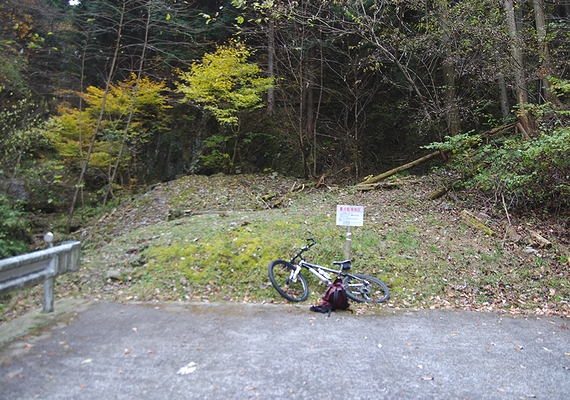 121124野山林道終点