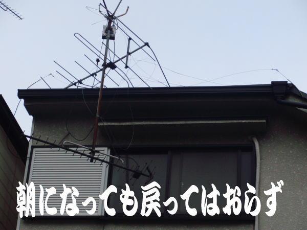 201211-3.jpg