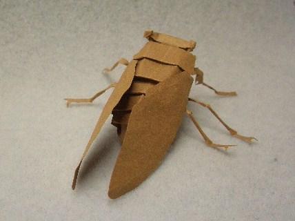 切り折り紙 セミ