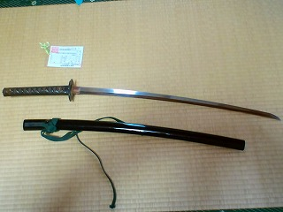 kanetomoHI3G0539 (4)
