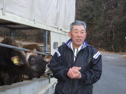 ジャージー牛と義彦