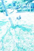 DSC_000110115.jpg