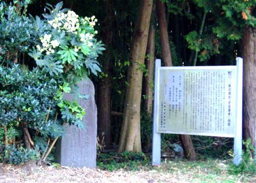 kowasimizu01.jpg