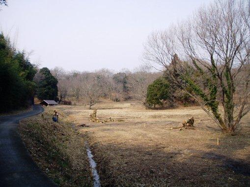 okataira001.jpg