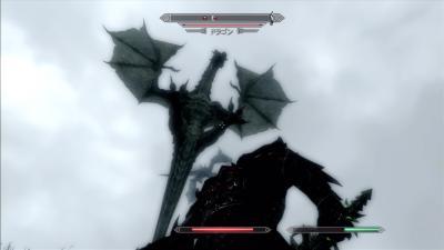ドラゴン2体