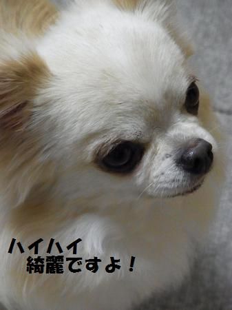 RIMG0405.jpg