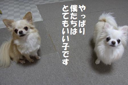 RIMG0512.jpg