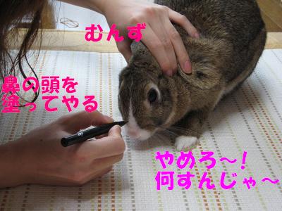 IMG_らくがき4806