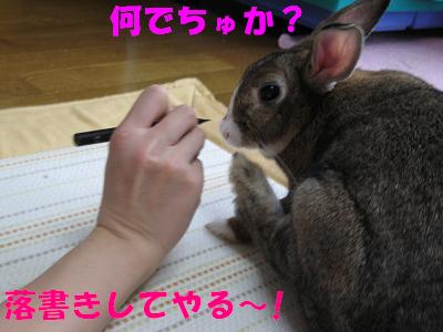 IMG_らくがき4809