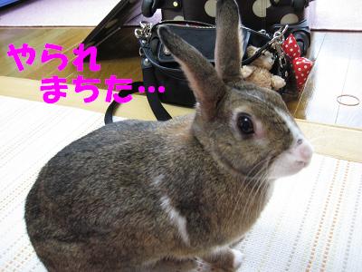 IMG_らくがき4819