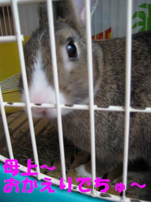 IMG_癒し4895