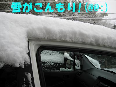 IMG_雪4908