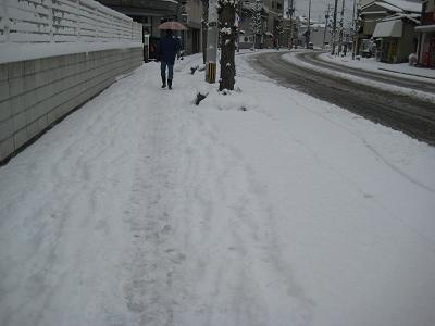 IMG_雪4912
