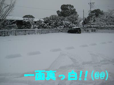 IMG_雪4909