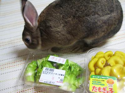 IMG_食品5471
