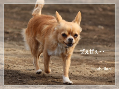 IMG_8992.jpg