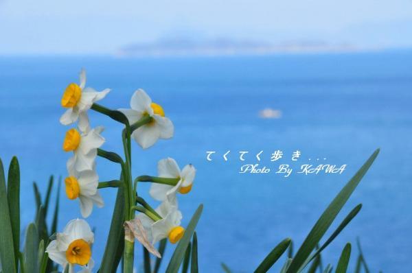 5下灘_7790