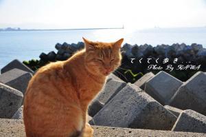 4梅津寺_7641
