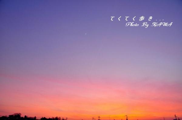 空_7919
