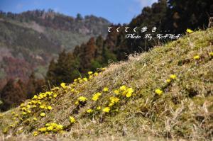 12南大王_9607