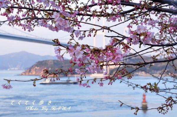 4糸山_9723