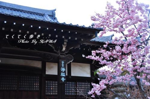 6淨福寺_0030