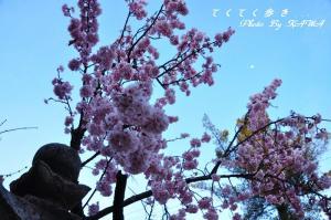 8淨福寺_0029