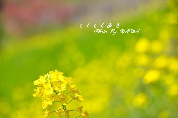 5旅行村_0193