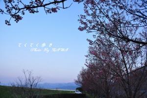 8赤坂泉_1022