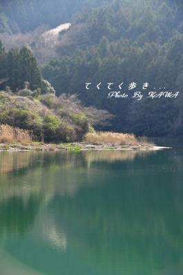 7源太桜_2485