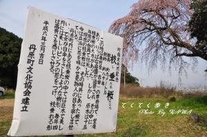 11古田_2513