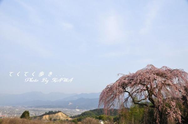 13古田_2531