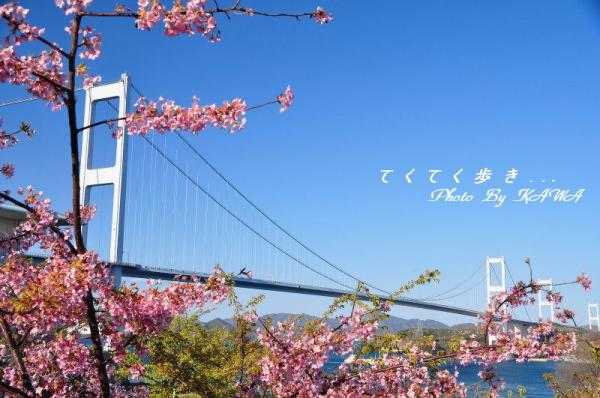 1糸山_2212