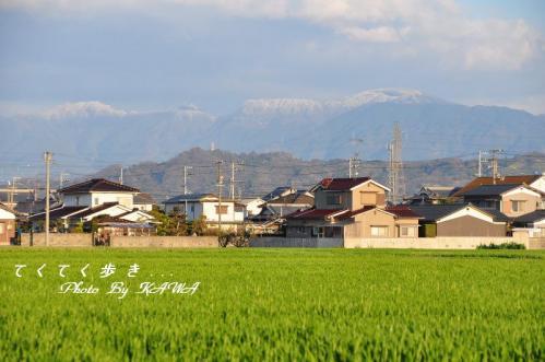 10松前_2695