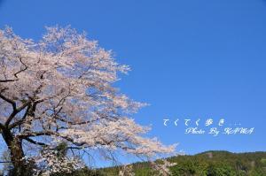 5中津_2863