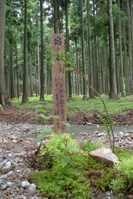 天戸間見の森 兵庫 青玉 神社