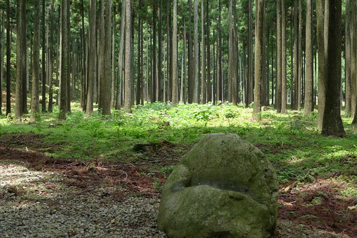 兵庫 天戸間見の森 青玉神社