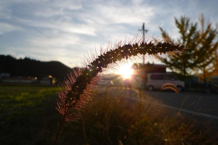 秋 夕陽 ひだ 高山 気功 日之本元極