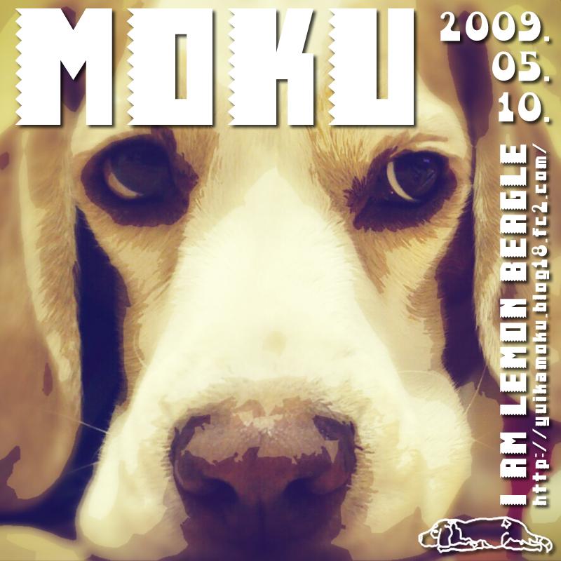 MOKU7.jpg