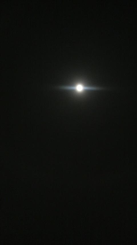 2010013100160000.jpg