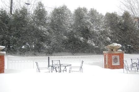 blizzard20091.jpg