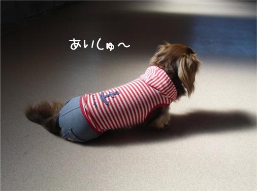 mei10_20120218100919.jpg