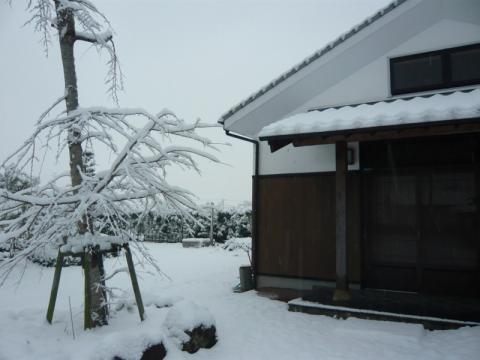 2010/01/13yuki3
