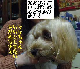 IMGP6086.jpg