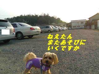 IMGP7467.jpg