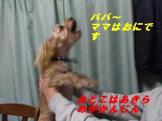 IMGP8149.jpg
