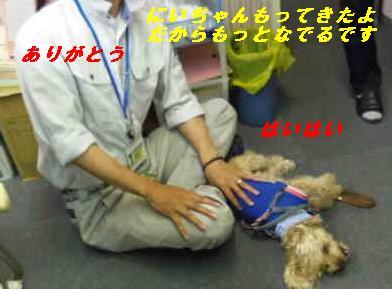 IMGP8812.jpg
