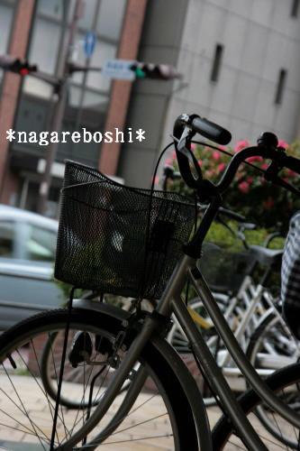 IMG_6063.jpg