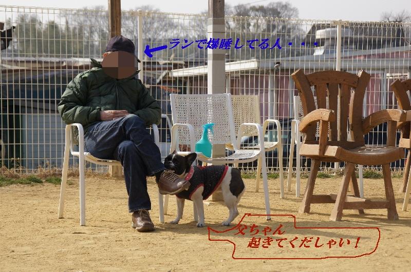 10_20110207150144.jpg